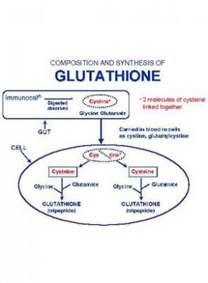 N-Acetyl Cysteine (สังเคราะห์ Glutathione)