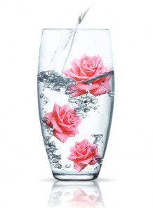 Rose Water (Rosa Damascena)