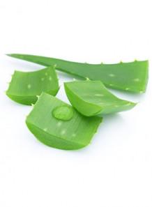 Aloe Vera Oil (Refined)