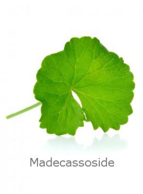 Madecassoside-80 (Centella Asiatica Extract)