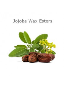 Jojoba Ester (Water-Soluble)