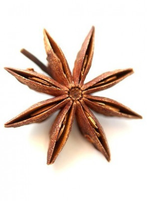 Star Anise Extract (Illicium verum)