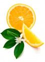Petitgrain Oil (Leaf)