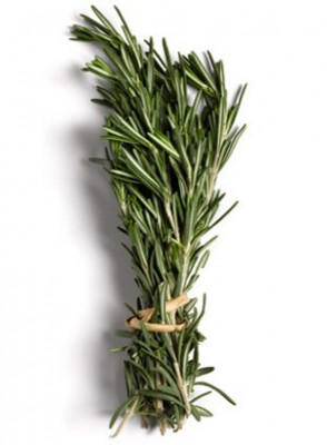 Rosemary Oil (Leaf)
