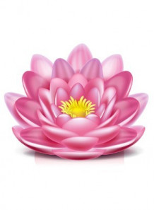 Happy Lotus