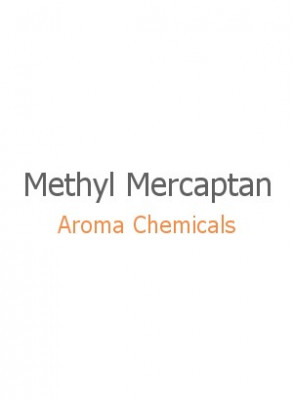 Methyl Mercaptan