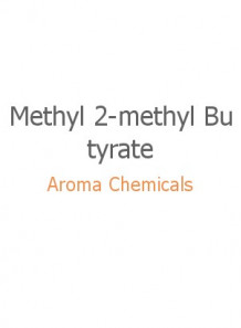 Methyl 2-methyl Butyrate