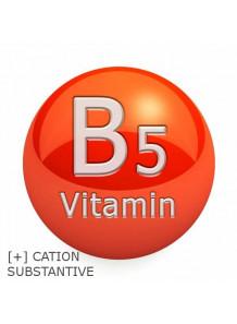 Condi-B5™ (Panthenyl Hydroxypropyl Steardimonium Chloride)