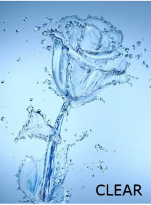 Flora Solve™ Clear (ผสมน้ำหอมในน้ำ ชนิดไม่มีสี)