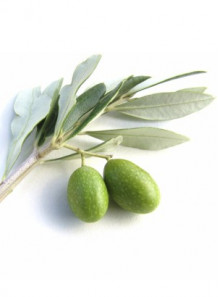 Olive CLEAR (Hydrogenated Olive Oil)