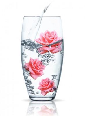Rose Water (Rosa Damascena)