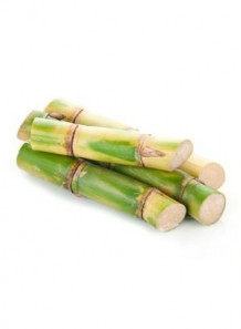 Sugarcane Extract (Policosanol)