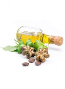 Sacha inchi Oil (Virgin Organic) น้ำมันถั่วอินคา