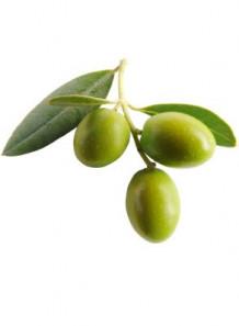 Squalane (Olive Oil)