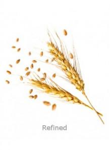 Wheat Germ Oil (Refined)