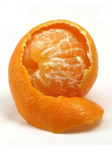 Satsuma (Body Shop)