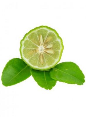 Bergamot Essential Oil (Fruit)