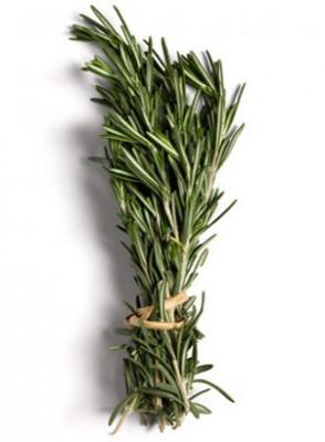 Rosemary Oil (Leaf)