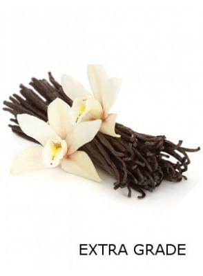 Vanilla Oil Extra (Fragrance Oil)