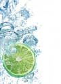 Lemon Freshy