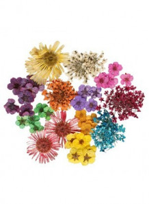 Turkish Dried Flower