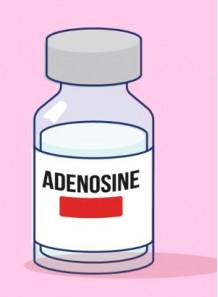 Pure-Adenosine™