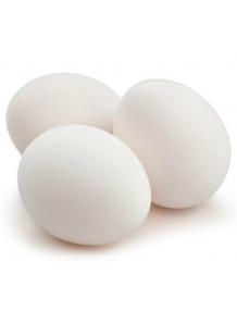 Albumin ผงไข่ขาว