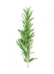 Rosemary Water