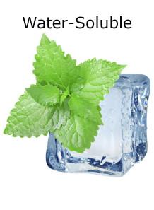 Menthol Water Soluble (เมนทอล ละลายน้ำ)