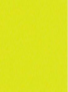 สี สำหรับ พิมพ์ แพด / สกรีน (เหลืองมะนาว / เงา) 1kg