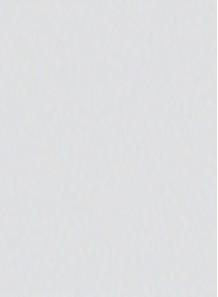 สี สำหรับ พิมพ์ แพด / สกรีน (ขาว / ด้าน) 1kg