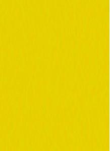 สี สำหรับ พิมพ์ แพด / สกรีน (เหลือง / ด้าน) 1kg