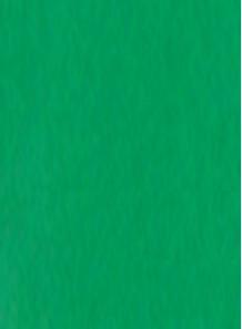 สี สำหรับ พิมพ์ แพด / สกรีน (เขียว / ด้าน) 1kg