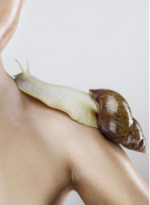 The Real Snail™ (Freeze-dried snail secretion)