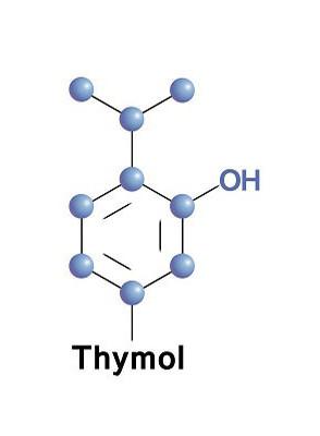 Thymol (crystal)