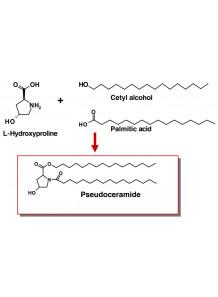 Pseudoceramide (Cetylhydroxyproline Palmitamide)