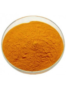 Coenzyme Q10 (โคเอนไซม์ คิวเทน) (98%)