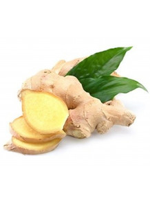 Ginger Extract (Gingerols 10%) สารสกัดขิง