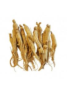 Dong quai root extract (Angelica sinensis) สารสกัดจากตังกุย