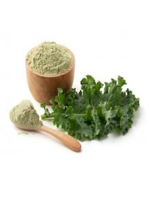 Kale Powder (Freeze-dried, Pure)