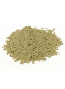 Warmwood Powder (Freeze-dried, Pure)