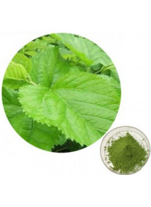 Mulberry (Green) Powder (Freeze-dried, Pure)