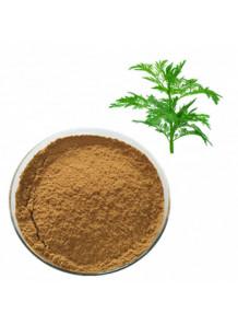 Warmwood Extract (Artemisia annua) สารสกัดจาก โกฐจุฬาลัมพา ชิงเฮา