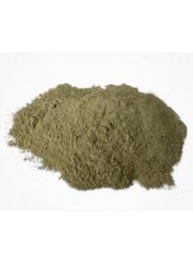 Bee Propolis (พรอพโพลิส) Extract (30% Flavonoids, Green)