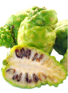Noni Fruit Extract สารสกัดจาก โนนิ ลูกยอ